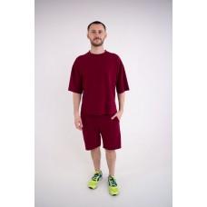 Мужской спортивный костюм Питт (бордовый)