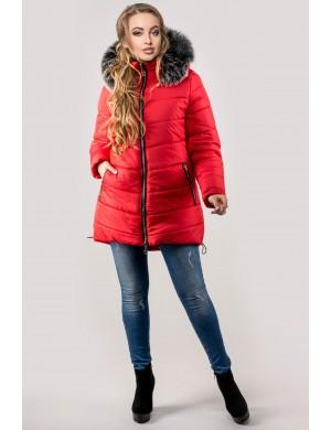 Женская зимняя молодежная куртка Бриана (красная серый мех)