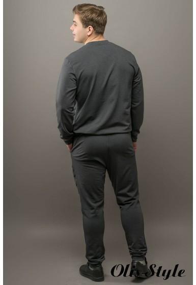 Мужской спортивный костюм Эполь (темно серый) Оптовая Цена