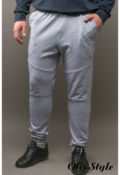 Мужские спортивные штаны Лотос (серый) Оптовая Цена