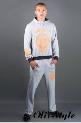 Мужской спортивный костюм Тотем (серый) Оптовая Цена