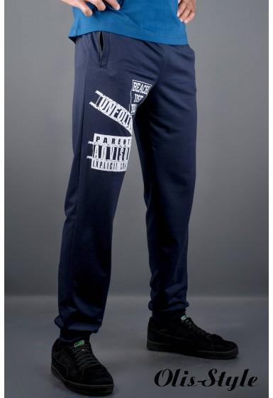 Мужские спортивные штаны Рико (синий) Оптовая Цена