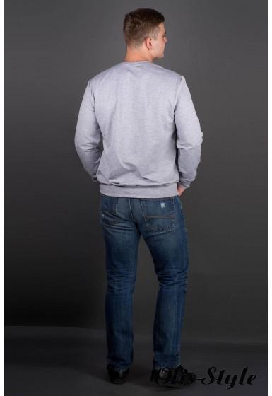 Мужская толстовка Роэль (серый) оптовая цена