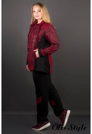 Спортивный костюм Айден (бордовый)   оптовая цена