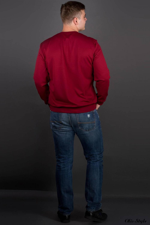 Мужская толстовка Роэль (бордовый) оптовая цена