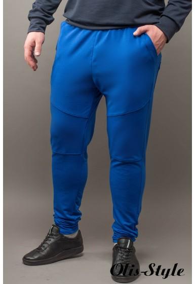 Мужские спортивные штаны Лотос (электрик) Оптовая Цена